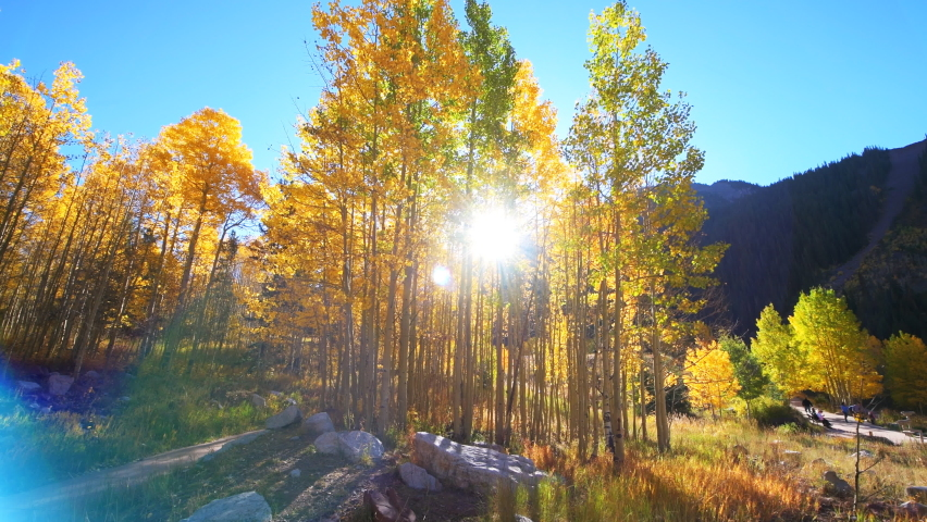 Maroon Bells morning sunrise with handheld panning pov of forest road path of golden trees in Aspen, Colorado in rocky mountains and autumn yellow foliage with people and sun flare