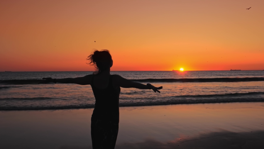 Silhouette of Happy slim woman with arms raised up on the beach at a beautiful sunset, birds flying over your head. Royalty-Free Stock Footage #1060125254