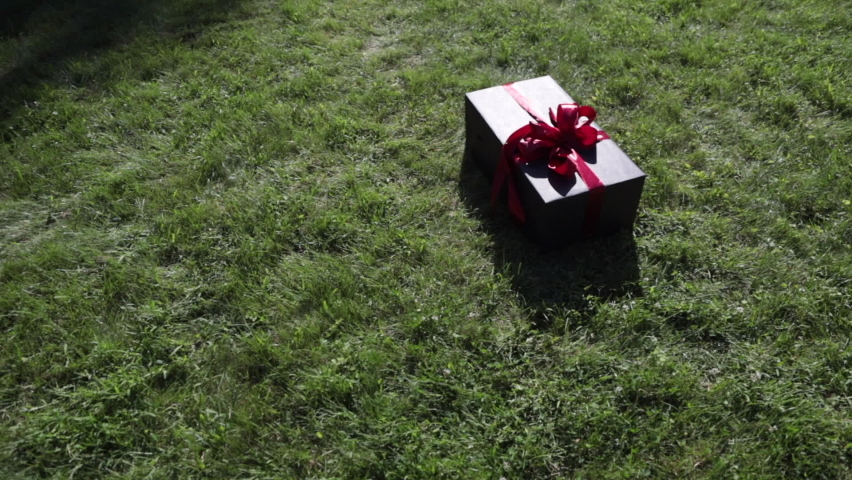 Gift in a beautiful package on the grass. High quality FullHD footage Royalty-Free Stock Footage #1060239839