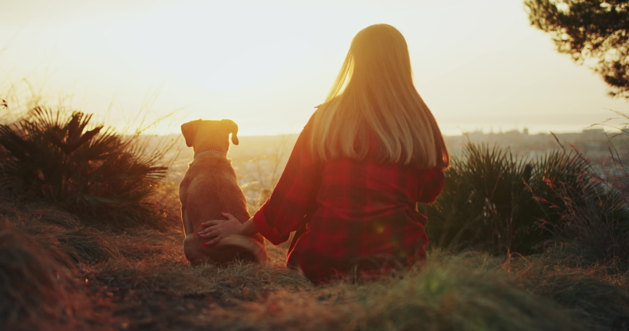 Back view of female enjoying beautiful summer sunrise pet lovely happy dog outdoors, incredible viewing park nature place sunset pleasant moment of owner with puppy, healthy lifestyle concept | Shutterstock HD Video #1060285115
