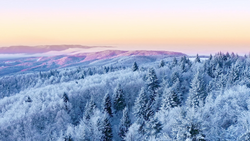 Mountain Frosty Winter Nature Trees Alpine Landscape Early Morning Breathtaking Natural Landscape Sunrise Holiday Travel And Tourism Frosty Tree Tops Vibrant Colors Aerial 4k | Shutterstock HD Video #1060362029