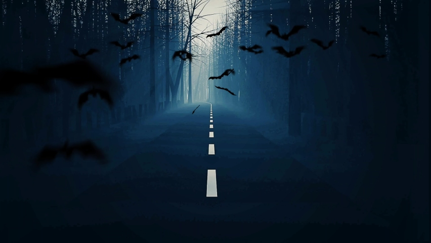Special effects - Scary noisy winter forest road grave to castle spooky in night of moon light with flying group of bats 3D seamless animation. Seamless looping animation of halloween forest.