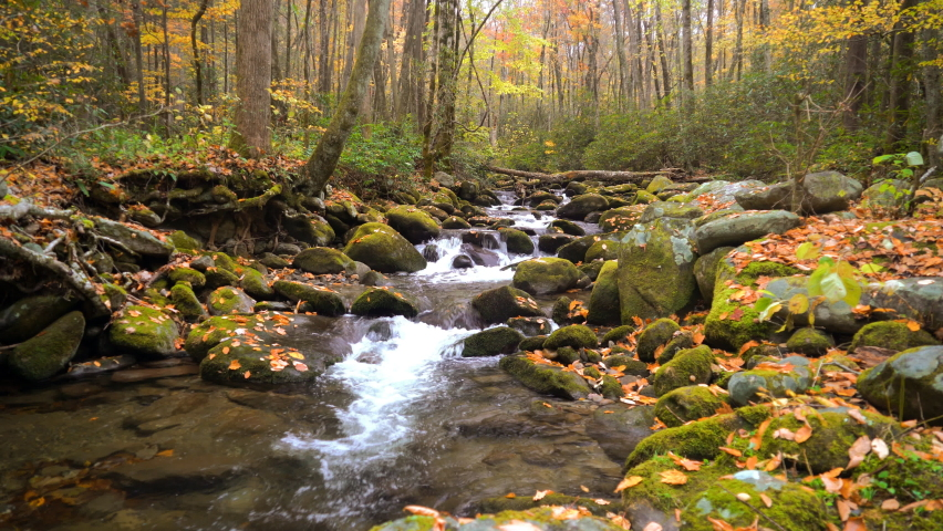 A gentle stream cascades around rocks, covered in moss, surrounded by trees adorned with autumn foliage in the Appalachian Mountains.