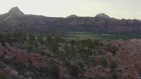 Tracking drone over trees and pink rocks with a wide grassy valley within Zion National Park