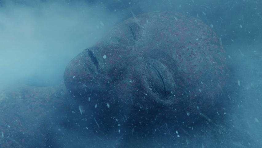 Dead Alien In Crash With Snow Falling