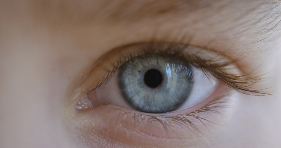 Blue Eye of Child Looking at Camera Close Up. Macro Shot Opening and Closing Blue Eyes Little Girl. Close Up Motion of Children Eyes. Human eye iris opening pupil.