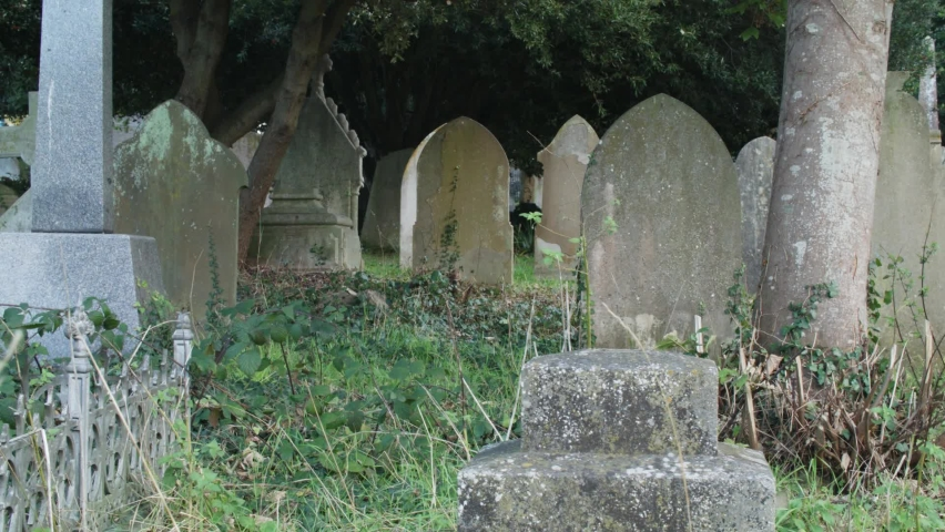 Slow track left past old headstone revealing overgrown graveyard