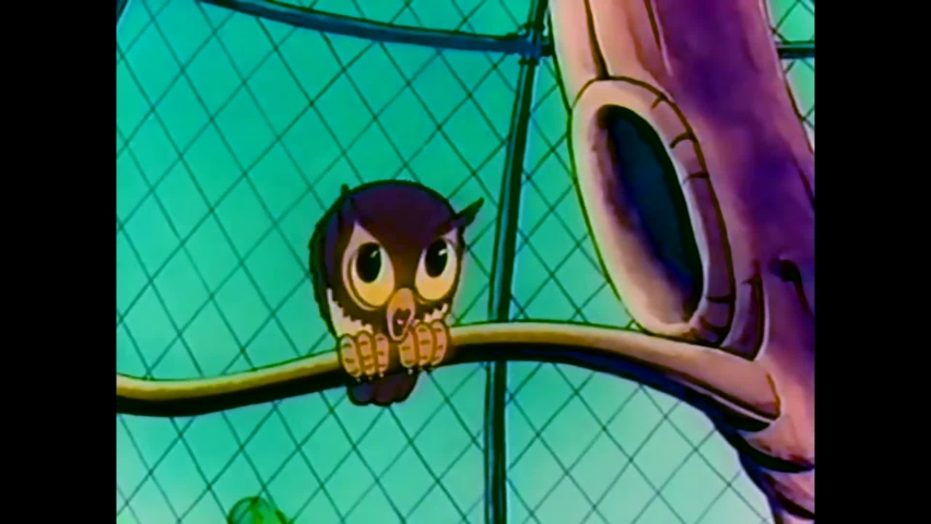 CIRCA 1939 - In this animated film, owls, parrots, and ostriches are seen at a zoo as well as a jail bird and stool pigeon.