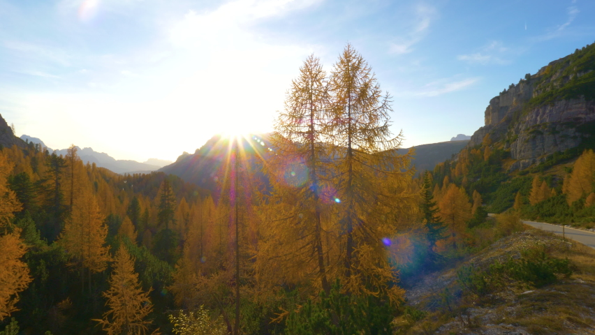AERIAL, LENS FLARE: Flying around a towering larch tree changing leaves in the Dolomites illuminated by the golden fall sun. Stunning drone shot of autumn mountain landscape in Tre Cime on sunny day | Shutterstock HD Video #1061012908