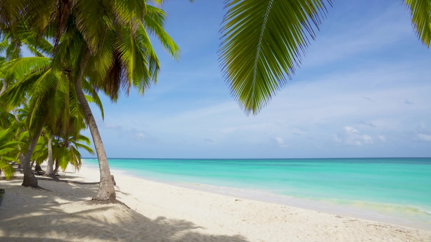 Summer sandy beach with sky over tropical sea view with empty space for product display advertisement | Shutterstock HD Video #1061022793