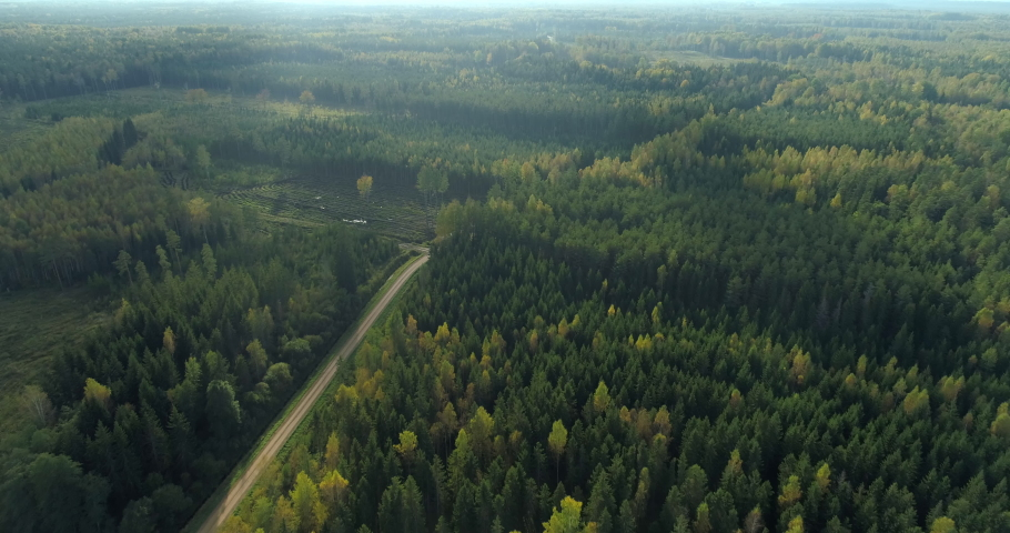 Green wild forest and deforestation area aerial view drone shot | Shutterstock HD Video #1061024179