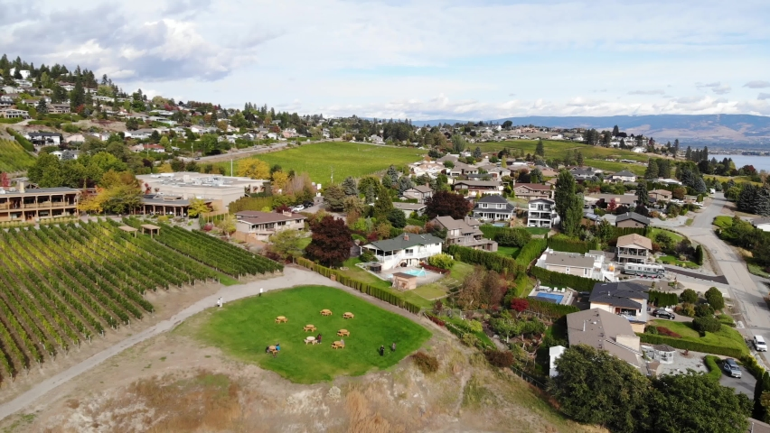 Beautiful drone aerial towards winery and residential area west kelowna