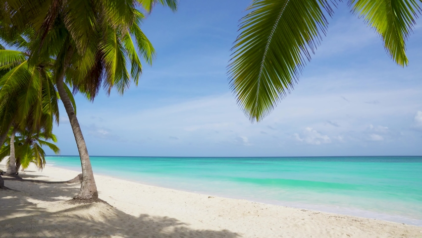 Summer sunny landscape on a beach with white sand, palm trees and a view of the beautiful blue sea. | Shutterstock HD Video #1061117797