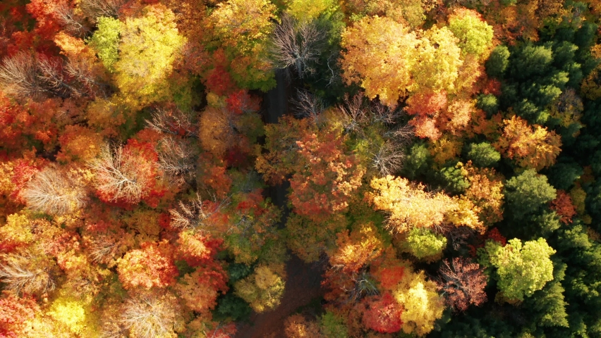 Aerial flythrough of Mountain Forests in Autumn with Fall Colors in Adirondacks, New York, New England | Shutterstock HD Video #1061148829