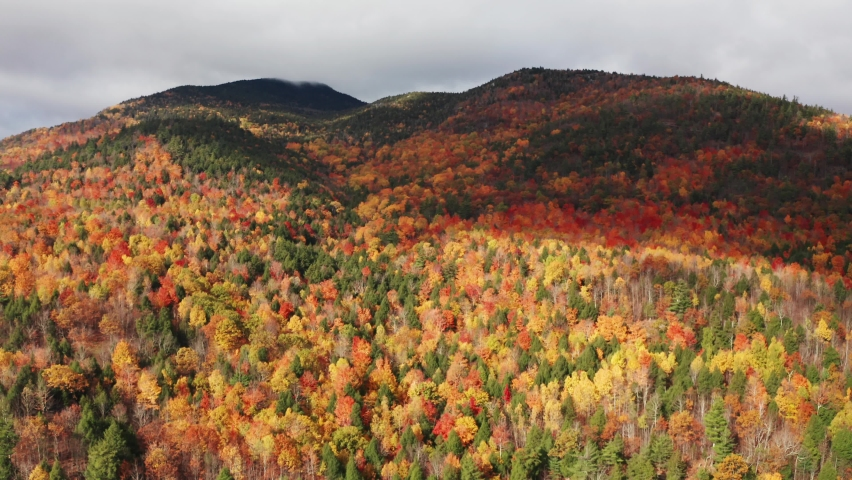 Aerial flythrough of Mountain Forests in Autumn with Fall Colors in Adirondacks, New York, New England | Shutterstock HD Video #1061148835