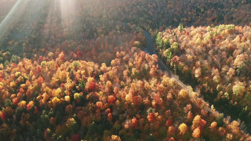 Aerial flythrough of Winding Road Through Autumn Trees with Fall Colors in Adirondacks, New York, New England | Shutterstock HD Video #1061148868