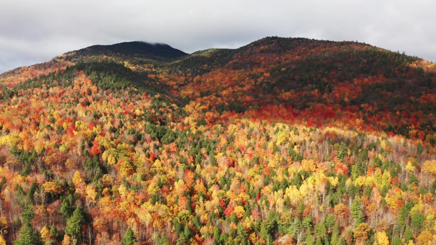 Aerial flythrough of Mountain Forests in Autumn with Fall Colors in Adirondacks, New York, New England | Shutterstock HD Video #1061148877