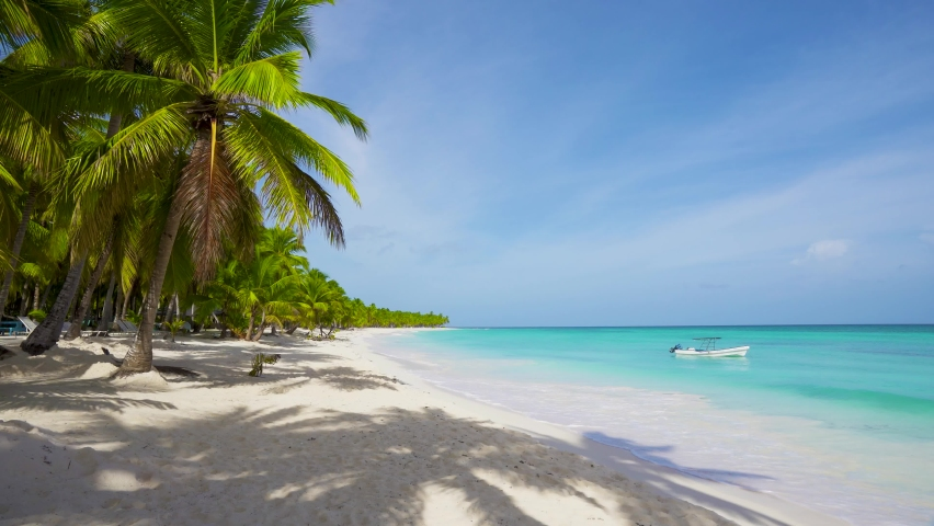 Travel to a tropical paradise. Paradise beach with palm trees and clear blue sea and white sand without people. Hot vacation on an island in the Atlantic Ocean. Dominican Republic Punta Cana. | Shutterstock HD Video #1061173048
