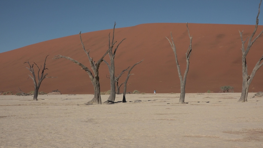 Namibia. Sossusvlei. Namib Desert on sunny early morning in Namib-Naulkuft Park in Namibia, southern Africa. | Shutterstock HD Video #1061177545