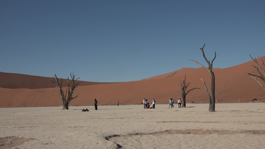 Namibia. Sossusvlei. Namib Desert on sunny early morning in Namib-Naulkuft Park in Namibia, southern Africa. | Shutterstock HD Video #1061177551