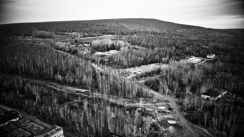 Quadrocopter view of the forest and terrain | Shutterstock HD Video #1061179129