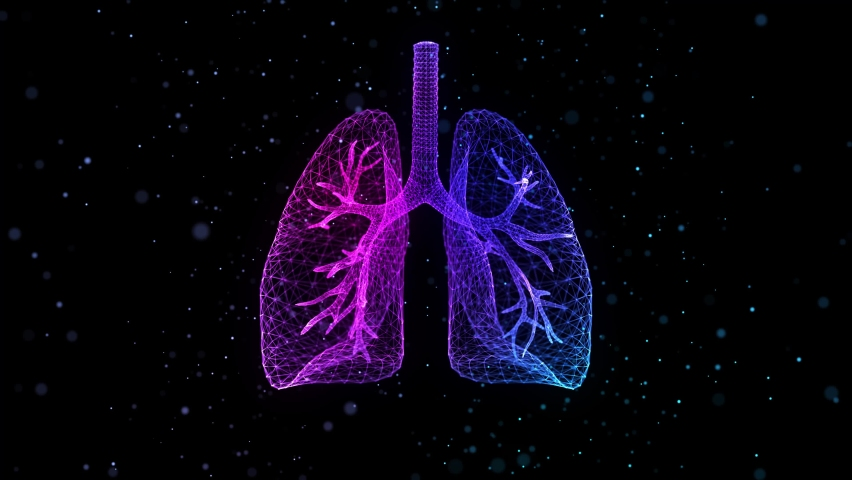 Human lungs of glowing blue light particles point of human lungs model. Looping motion animated neurons in 3d virtual space. Royalty-Free Stock Footage #1061186263