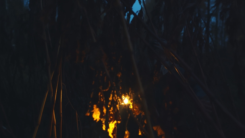Woman in respiratory mask with flashlight wading through thicket at night. Female survivor in protective gas mask in dark forest during virus apocalypse. Halloween concept | Shutterstock HD Video #1061239780