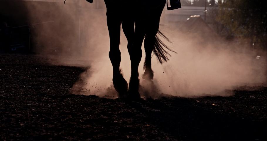 Close up horse hooves step ground at sunset. Dust and smoke swirls. Slow motion. Slow motion. Equestian sport and active lifestyle. Animals concept.   Shutterstock HD Video #1061273956