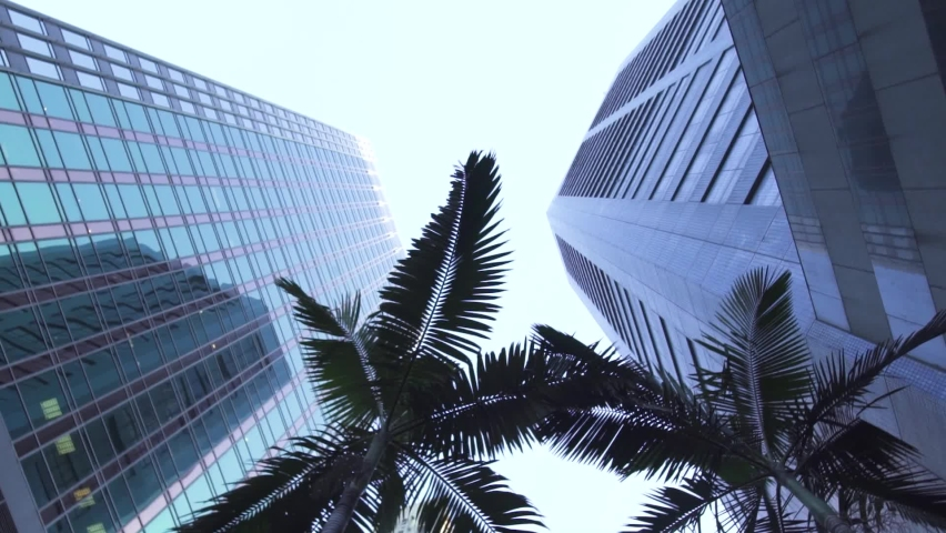 Spinning among high office buildings with glass facades near palm tree on downtown street of Chinese city under blue sky low angle shot on October 15 in Hong Kong.   Shutterstock HD Video #1061295727