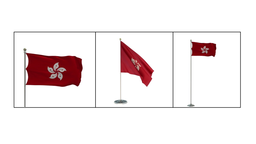 3D Render of the Hong Kong Flag on a Flag pole 3 different shots long-medium shot -small office pole with Alpha-matte-Looping   Shutterstock HD Video #1061298271
