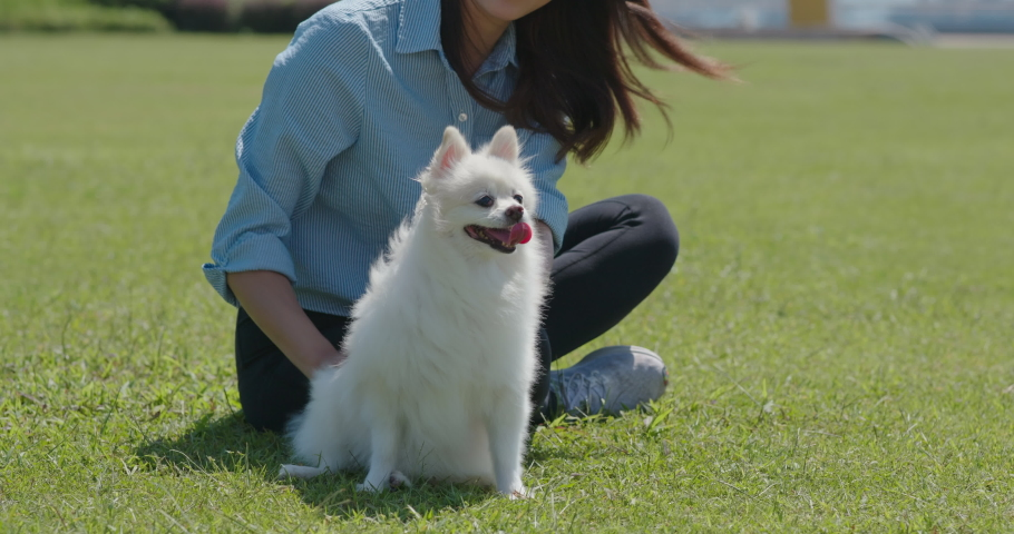 Woman go out with her dog   Shutterstock HD Video #1061333809