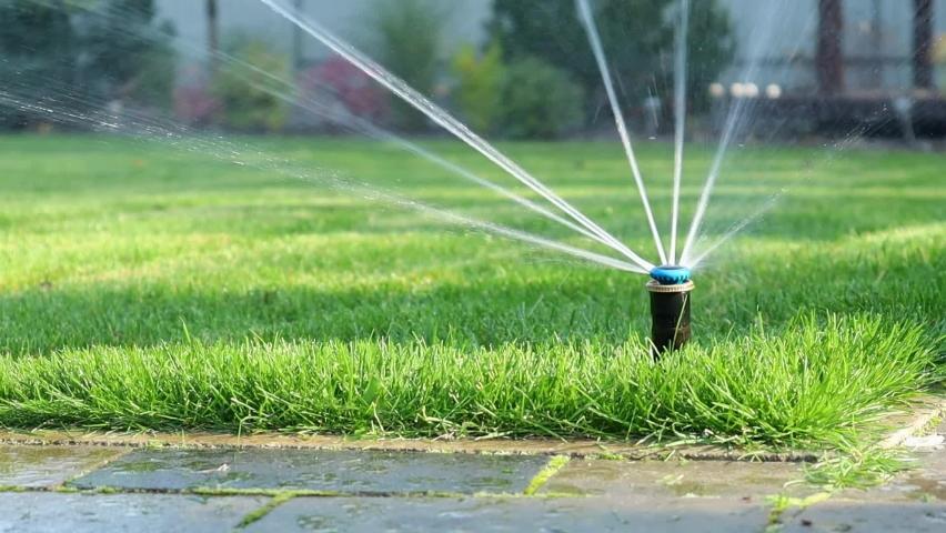 Grass irrigation. Garden Irrigation sprinkler watering lawn.