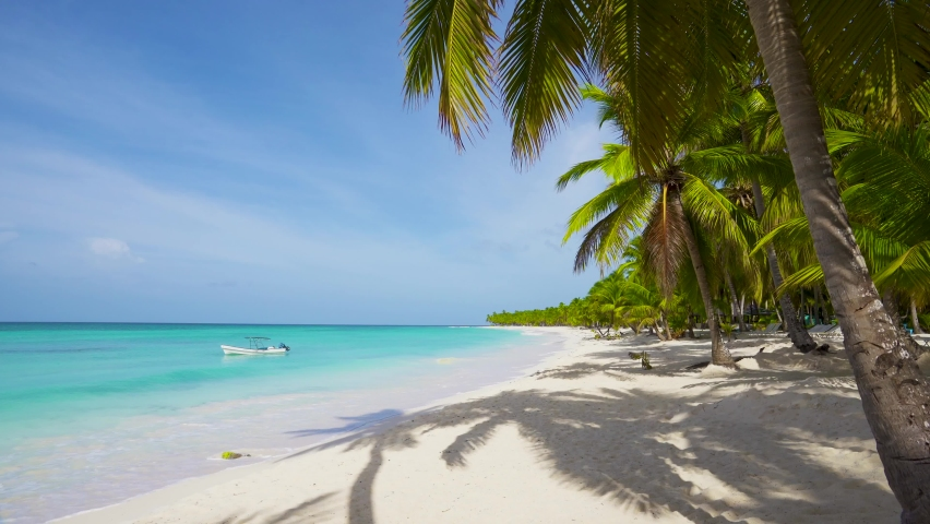 Relax on an empty sea beach. Travel to the paradise sea beach. The Dominican Republic beaches. Travel to Island Saona, idyllic tropical sea beach loop video, copy space.