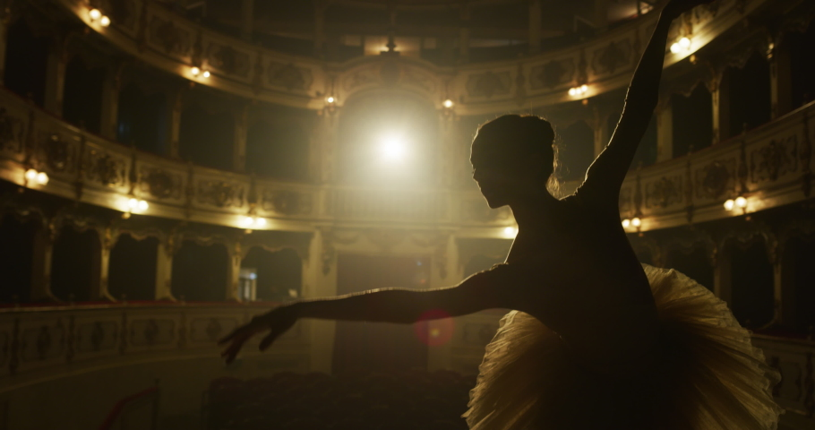Cinematic close up shot of an young graceful classical ballet female dancer in white tutu is performing a choreography on classic theatre stage with dramatic lighting before start of a show. Royalty-Free Stock Footage #1061502778