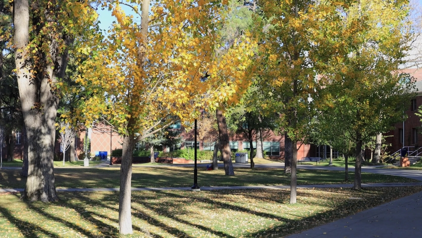 Beautiful fall color around the campus of Northern Arizona University at Arizona | Shutterstock HD Video #1061530762