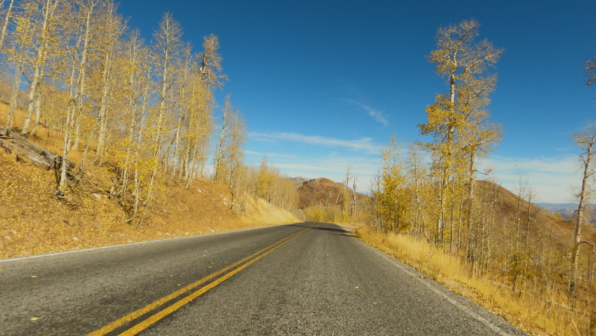 Mountain road autumn forest colorsful POV 4K. Beautiful autumn fall colors along Wasatch Mountains. Valley landscape with road and colorful fall trees. Rural farming community road. | Shutterstock HD Video #1061538139