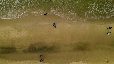 Birdseye Overhead of Couples, Husband & Wife, Boyfriend & Girlfriend Strolling Along Beach on Cold Gloomy Morning