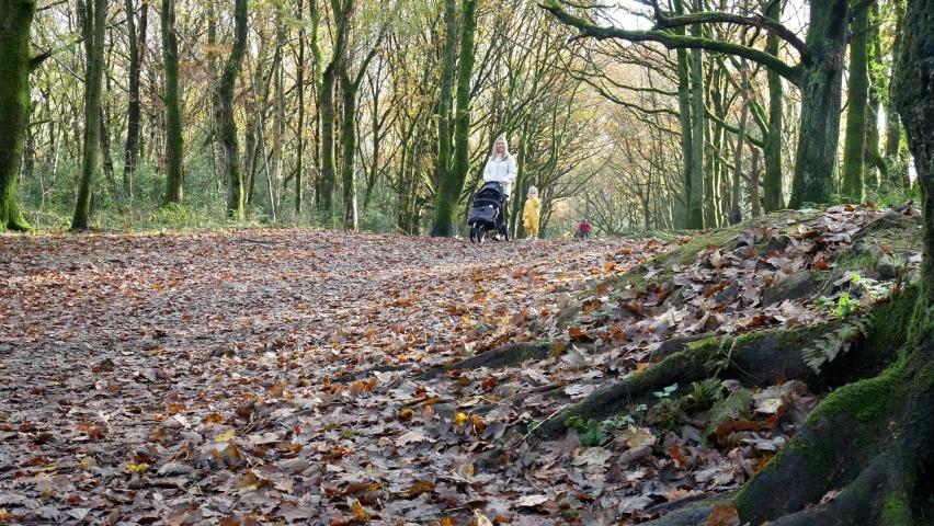 Rivington , Lancashire / United Kingdom (UK) - 11 07 2020: Mother and baby walking in Autumn woodland pushing pram as mountain bike rider passes