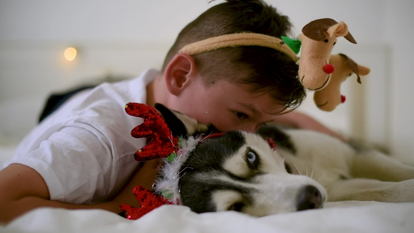 Handsome boy with carnival horn kissing the funny husky dog | Shutterstock HD Video #1062077404