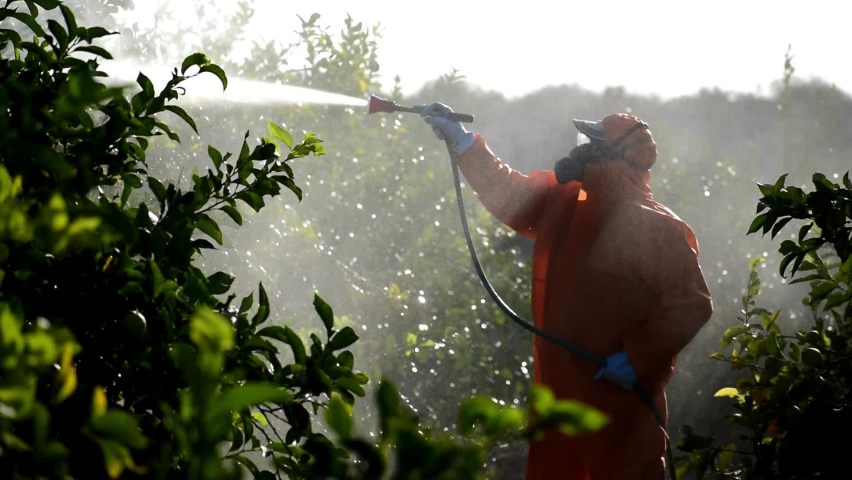 Silhouette of farmworker spraying ecological pesticide. Farmer fumigate spray pests in protective suit and mask lemon trees. Man spraying toxic pesticides, pesticide, insecticides  Royalty-Free Stock Footage #1062137971