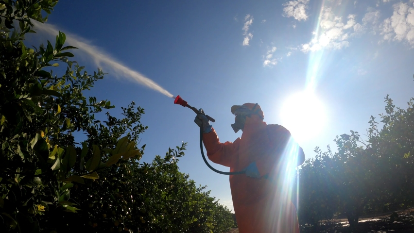 Spray ecological pesticide. Farmer fumigate in protective suit and mask lemon trees. Man spraying toxic pesticides, pesticide, insecticides  Royalty-Free Stock Footage #1062184996