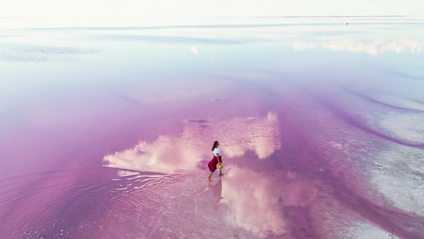 happy carefree young girl in red skirt and straw hat joyfully walking in water of amazing pink lake with calm surface and clouds reflections Royalty-Free Stock Footage #1062250402