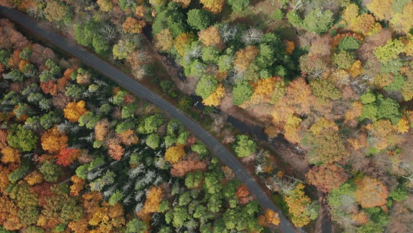 High Angle Aerial Drone Shot of Rural Road with Beautiful Fall Leaf Colors | Shutterstock HD Video #1062398803