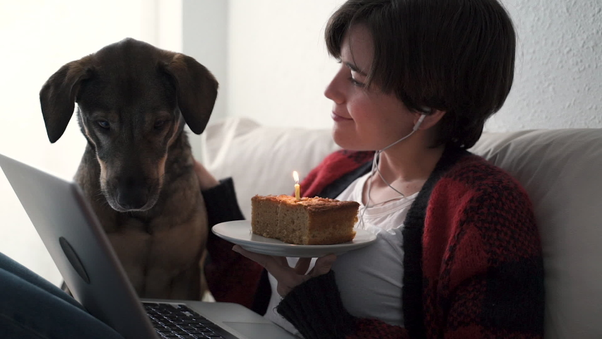 Young woman having video call birthday party at home with her dog - Focus on cake - Social distancing celebration concept  Royalty-Free Stock Footage #1062404173