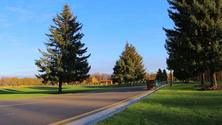 Big fir tree and asphalt road. Realxing autumn background. | Shutterstock HD Video #1062409996