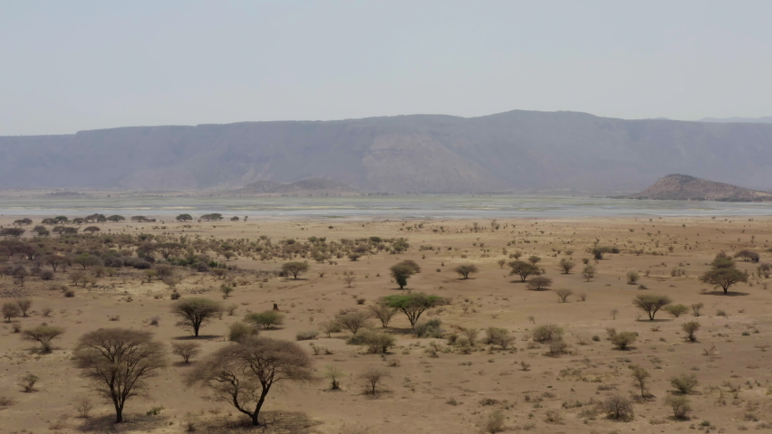 Aerial shot of Tanzania. Drone video savannah with dried grass, trees and bushes where at the foot of the mountain ranges there is a lake with water. Beautiful background landscape video. | Shutterstock HD Video #1062463690