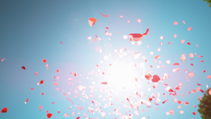 SLOW MOTION, CLOSE UP, BOTTOM UP, LENS FLARE, DOF Heart shaped confetti fall from the clear blue sky during a baby gender reveal party. Pink and red pieces of paper in shape of hearts fall from heaven | Shutterstock HD Video #1062467437