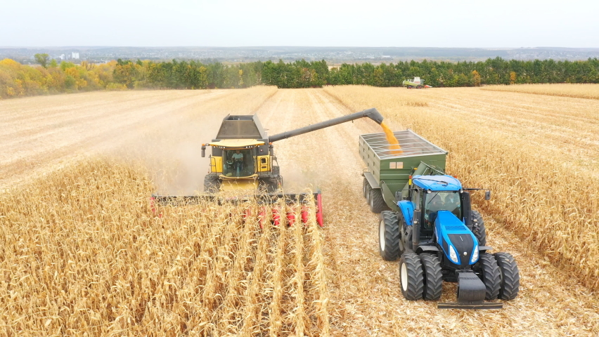 Aerial shot of combine loading off corn grains into tractor trailer. Agricultural machines working in farmland during harvesting. Farming concept. Top view Royalty-Free Stock Footage #1062622144