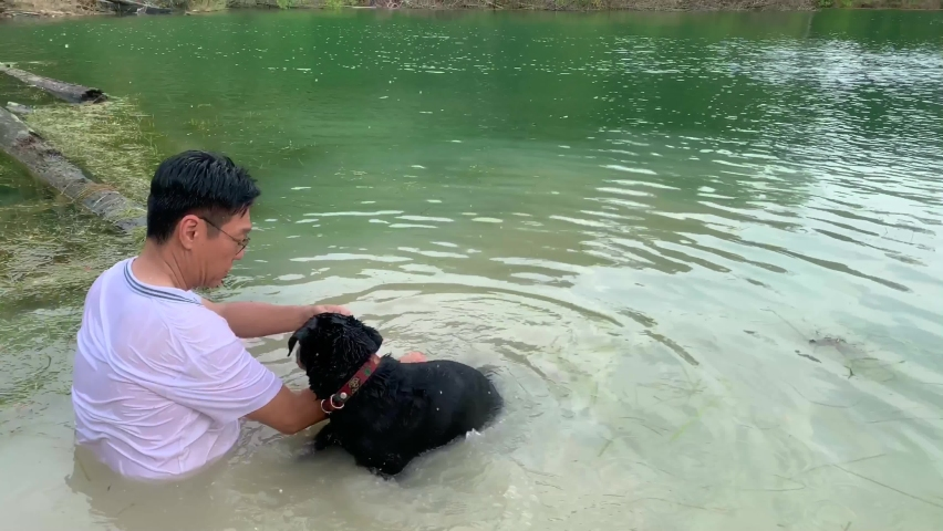 Dog swimming in a lake and fetching a toy thrown by adult man. Sport for dog.