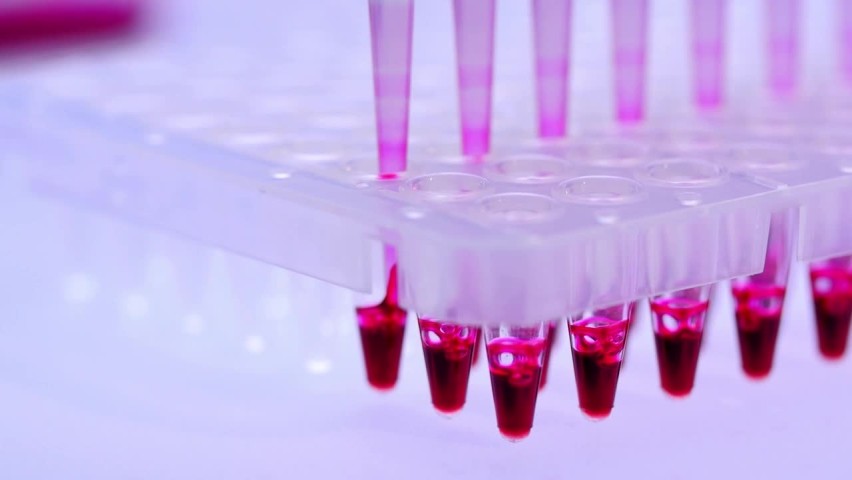 Pcr Processing In Genetic Laboratory High Quality Footage Royalty-Free Stock Footage #1063044640